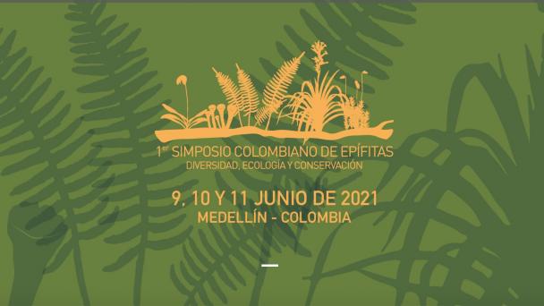 Captura de Pantalla 2021-05-02 a la(s) 18.42.10