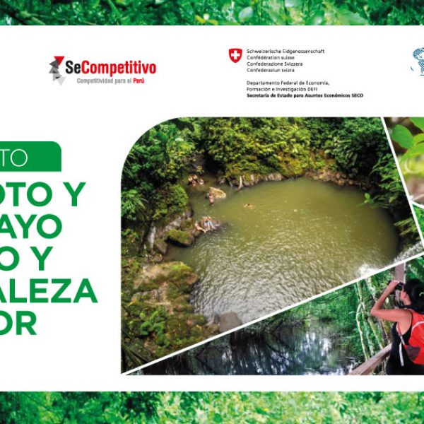 banner_proyecto_turismo