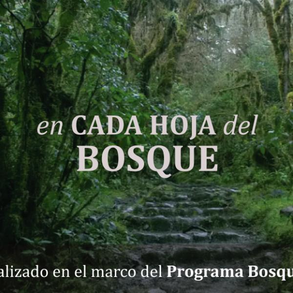 documental-pba-ecuador