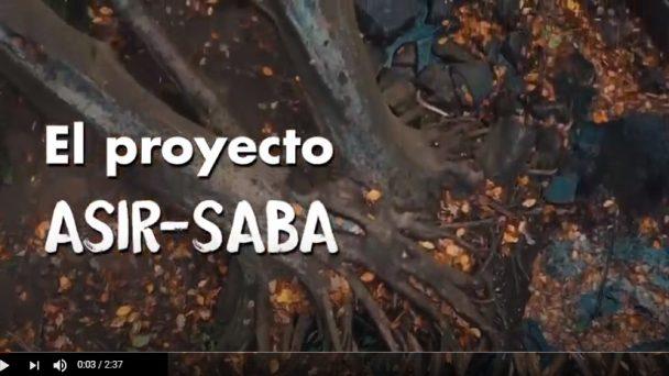 video-asir-saba1